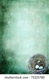 Bird's nest with eggs on a grunge background with copy space.