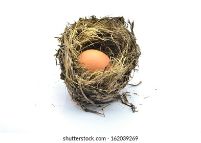Bird's nest with eggs on a white background.