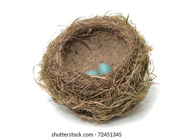 Bird's nest with eggs on the white background