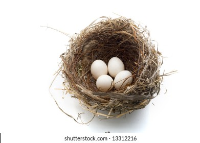 bird's nest with four eggs isolated on white