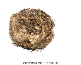 Bird's nest of grass and branches with bird down close-up. Symbol of a broken family, loneliness or absence.