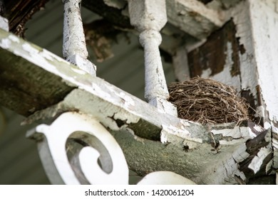 A bird's nest hidden among the peeling paint and rotting wood of a porch of an abandoned house