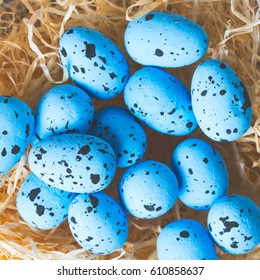 Bird's nest made out of hay with blue eggs. Flat lay top view.