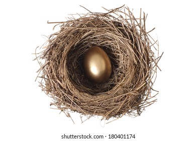 Bird's nest with single golden egg, cut out on white background