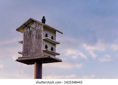 Birds perched on a wooden birdhouse with blue sky and clouds in the background
