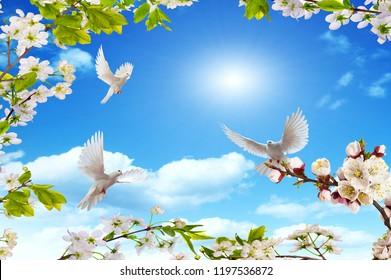 birds rejoicing in the spring