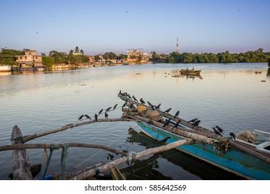 Birds resting on fishing boat in Sri Lanka. City in background.