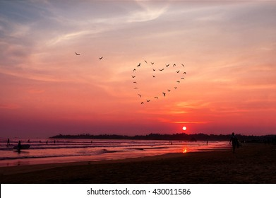 birds silhouettes flying above the sea against sunset