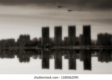 birds that swim in the sky. in the water reflect the city and skyscrapers. conceptual black and white photography, personification of environmental problems, urban construction and life in the city