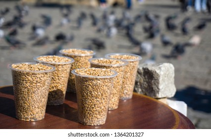 Birdseeds in plactic glasses on peddler workbench. Bird feed on seller counter. Flock of pigeon birds feeding on background. Hungry pigeons eating bread. Bird foods closeup in Ortakoy, Istanbul Turkey