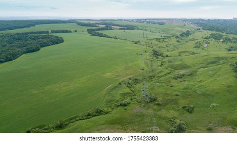 bird's-eye view of a green field