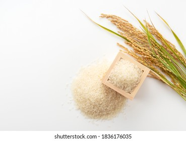 A bird's-eye view of white rice, measuring cups and ears of rice on a white background