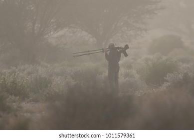 Birdwatcher among bushes on foggy weather