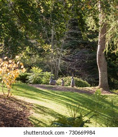 Birnam By Dunkeld,Scotland-October 05, 2017: Beatrix Potter Exhibition and Gardens on a bright sunny day in autumn and bunny rabbits in the clearing,