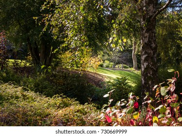 Birnam By Dunkeld,Scotland-October 05, 2017: Beatrix Potter Exhibition and Gardens on a bright sunny day in autumn with some rabbits in the clearing,