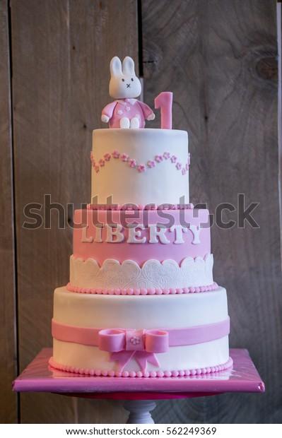 Pleasant Birthday Cake 1 Year Old Child Stock Photo Edit Now 562249369 Funny Birthday Cards Online Alyptdamsfinfo