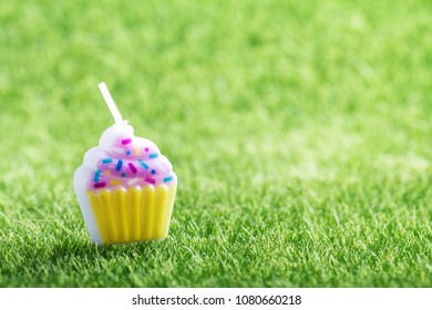 Birthday cake candle on green grass background. Holiday celebration