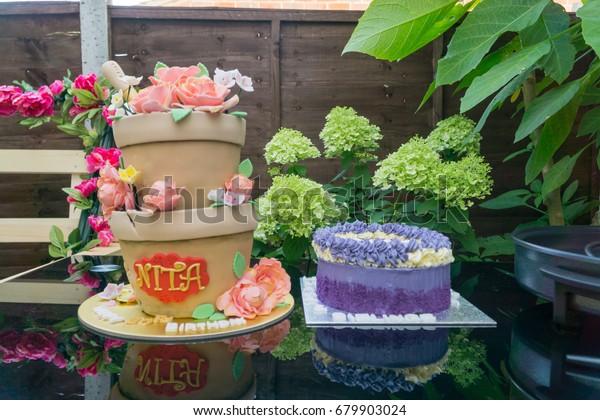 Astounding Birthday Cake Made Look Like Plant Stock Photo Edit Now 679903024 Funny Birthday Cards Online Sheoxdamsfinfo
