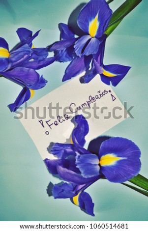 birthday card happy birthday greetings in spanish feliz cumpleaos with iris flowers against