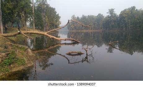 BIS HAZARI LAKE IN CHITWAN OF NEPAL