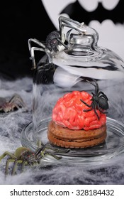 Biscuits with marzipan in the form of the brain under a glass bell and spiders