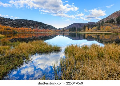 Bishop, Autumn, Fall Color