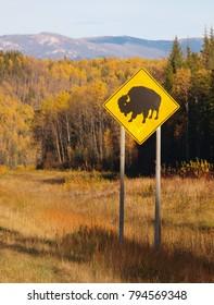 Bison road sign, British Columbia, Canada