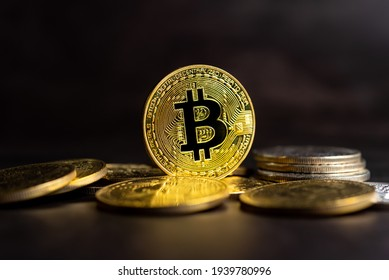 criptomonede market