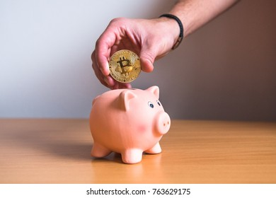 Bitcoin coin in physical form. Mans hand investing in cryptocurrencies, saving money in piggy bank.