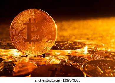 Bitcoin. Crypto currency Gold Bitcoin, BTC, Bit Coin.Macro shot of Gold Bitcoin coins. Cryptocurrency trading concept.