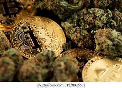 Bitcoin Cryptocurrency coins with Cannabis Medical Marijuana Buds close up image. Cannabis Medical marijuana Business concept.