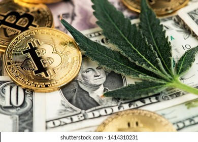Bitcoin Cryptocurrency coins with Cannabis Medical Marijuana Leaf and US Dollar Banknotes. Cannabis Medical marijuana Business concept. BTC Bitcoin Dollar Marijuana Cannabis CBD