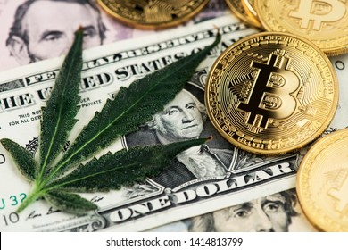 Bitcoin Cryptocurrency virtual money with Cannabis Medical Marijuana Leaf and One US Dollar Bill. Cannabis Medical marijuana Business concept. BTC Bitcoin Dollar Marijuana Cannabis CBD