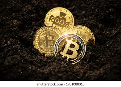 Bitcoin hold concept. Cryptocurrency stored in the ground - saving symbol.