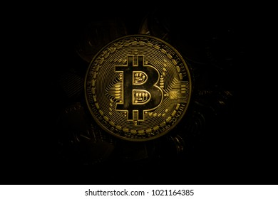 Bitcoin inside a piggy bank with a lot of coins