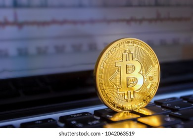 Bitcoin lies on the laptop keyboard