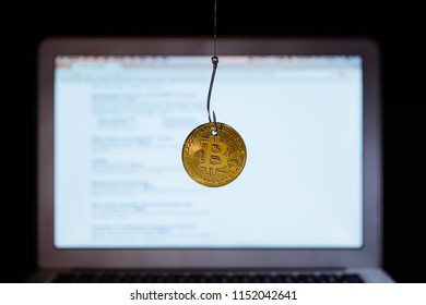 Bitcoin on a fishhook. Webpage on computer background.