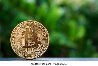 Bitcoin on wooden table and nature background.Bitcoin as most important cryptocurrenc