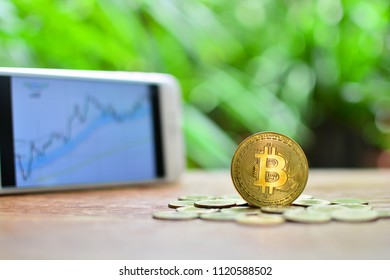 bitcoin set on coins for concept investment fund finance and cryptography digital money