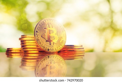Bitcoins and New Virtual money concept.Stack of Many gold bitcoins on reflective surface and blur Background.Golden coin with icon letter B.Mining or blockchain technology for cryptocurrency.