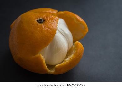 Bitter garlic bulb in tangerine skin. A hypocritical, evil man, a pretender. An unpleasant surprise, a trick, a deception. Dark background, side lighting.