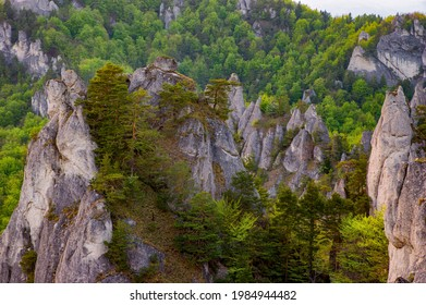 Bizarre rock towers with spring colors of leaves on the trees. Paradise for climbers and adventurers, Sulovske skaly, Sulov, Slovakia.  - Shutterstock ID 1984944482