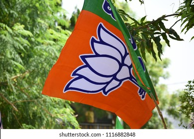 BJP Bhartiya Janta Party Flag Waving India
