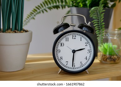 A black alarm clock stands on a wooden table surrounded by vases with a florarium and a flower in a pot. Space for text.