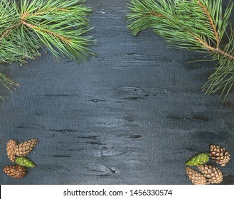 A black background with a pine motif. Cones and needles of a tree. Background for the restaurant menu, pub.