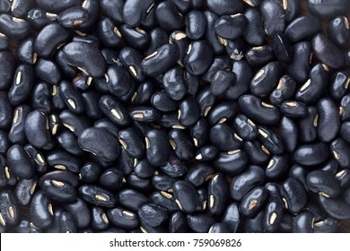 black bean on background.top view