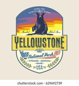 Black Bear Baribal at dawn, national Park Yellowstone, illustration