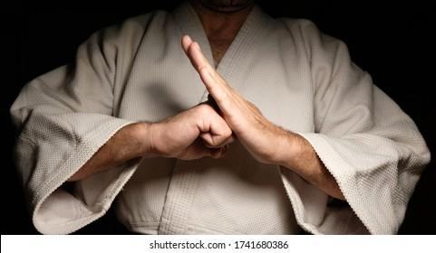 Black belt Karate Sensei closeup stances