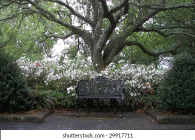 Black bench sitting under a tree.