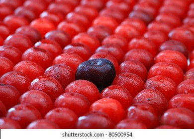 Black big cherry among small red cherries. Shallow depth of field.